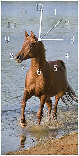 Wallario Design Wanduhr Braunes Pferd am Meer Araber am Wasser aus Acrylglas, Größe 30 x 60 cm, weiße Zeiger - 1